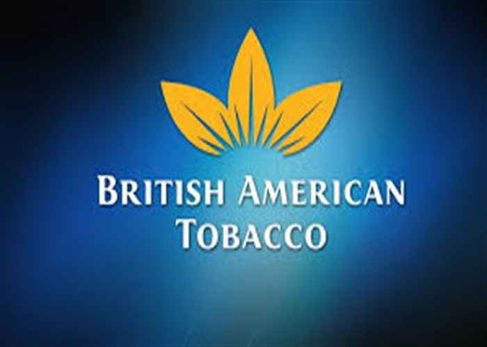 business overview of british american tobacco British american tobacco plc zambia is a subsidiary of british american tobacco group, which owns, directly or indirectly, investments in the numerous companies.